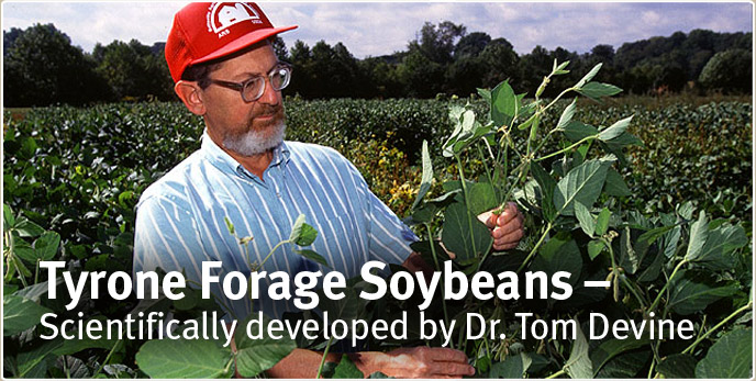 Tyrone Forage Soybeans - Scientifically developed by Dr. Tom Devine
